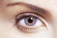 FreshLook Colors - Kontaktne leće u boji - Misty Gray